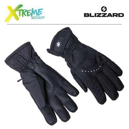 Rękawice narciarskie Blizzard VIVA DAVOS